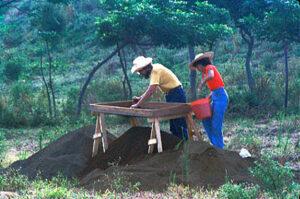 Screening soil with Carmelita, a student at the University of Veracruz, Matacapan, Veracruz